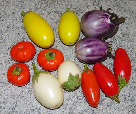 aubergines4